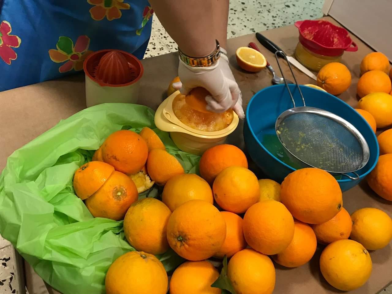 Le arance di Jalari vanno a scuola Azienda Agricola Biologica Jalari