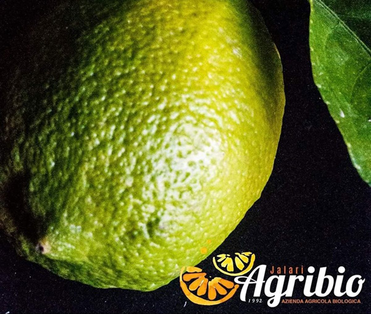 Limoni Verdelli Bio Azienda Agricola Biologica Jalari