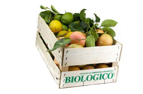 Cassetta agrumi biologici siciliani