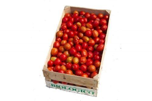 Cassetta Pomodorini Azienda Agricola Biologica Jalari