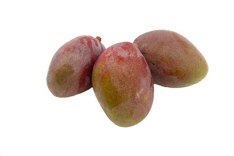 mango biologico sicilia