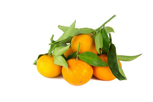 Clementine Biologiche Nova Azienda Agricola Biologica Jalari