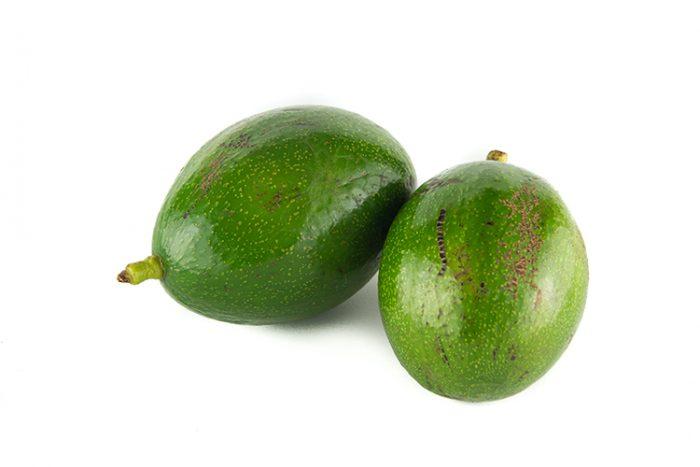Avocado zutano Bio Azienda Agricola Biologica Jalari