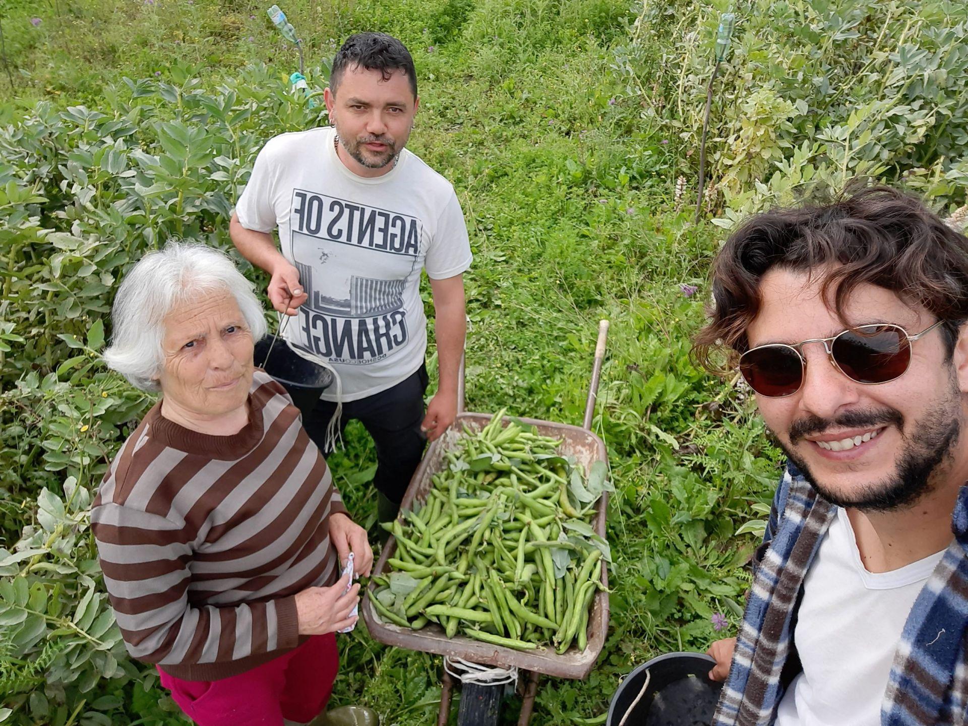 La Corriera Contadina Azienda Agricola Biologica Jalari
