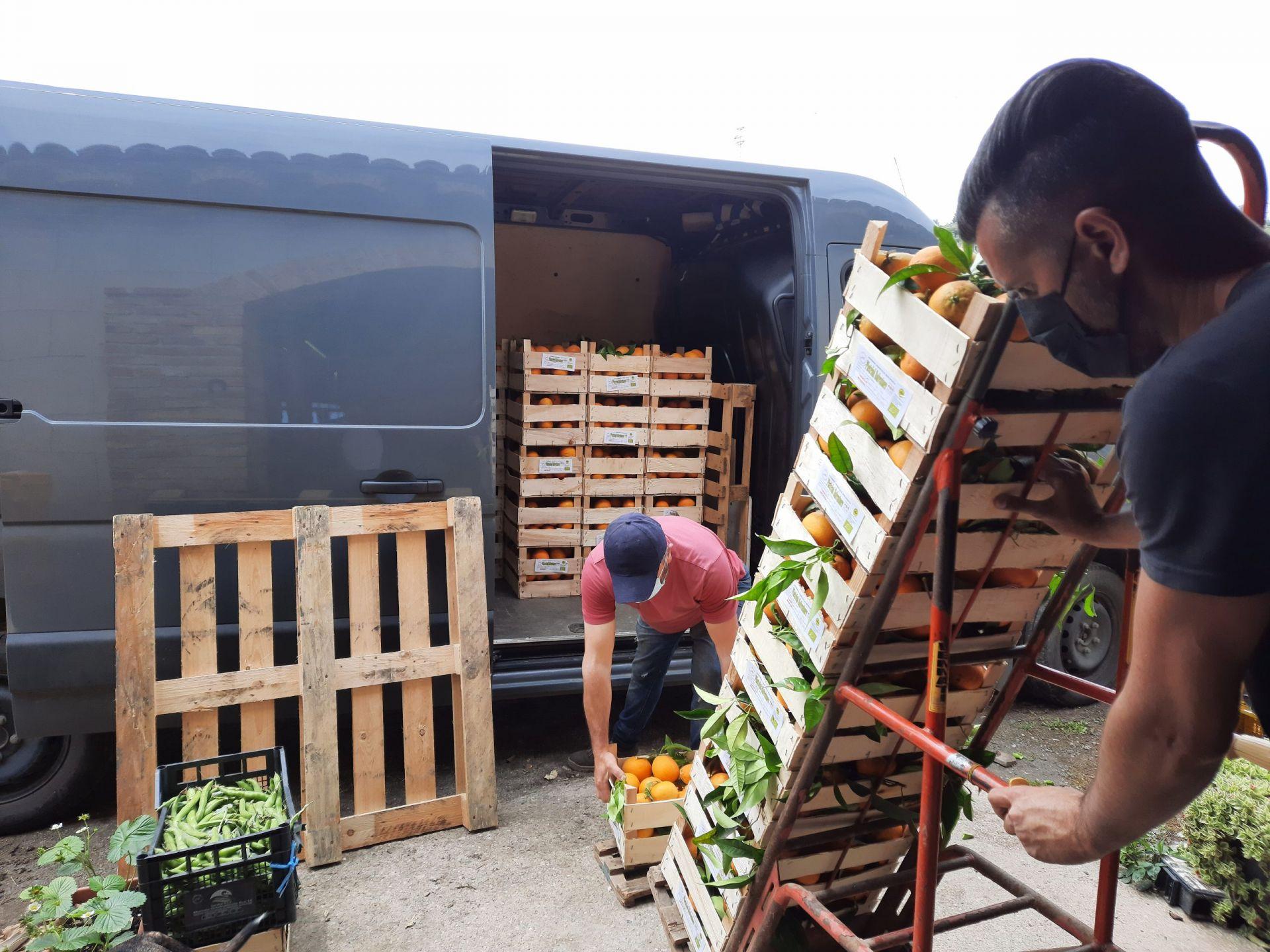 le colture del Sud Italia direttamente a casa vostra