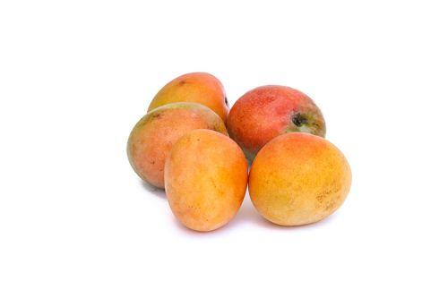 Mango Glenn Azienda Agricola Biologica Jalari